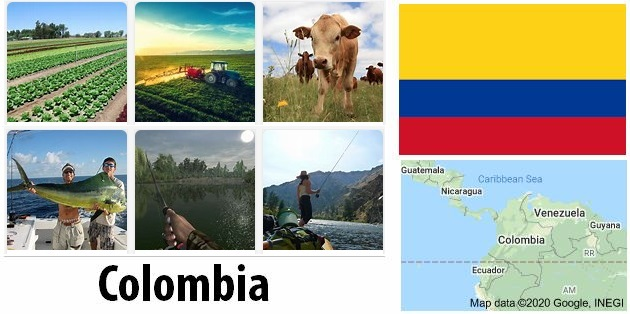 Agriculture and fishing of Colombia