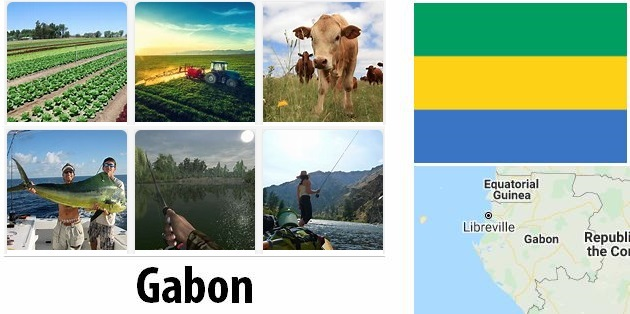 Agriculture and fishing of Gabon