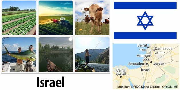 Agriculture and fishing of Israel