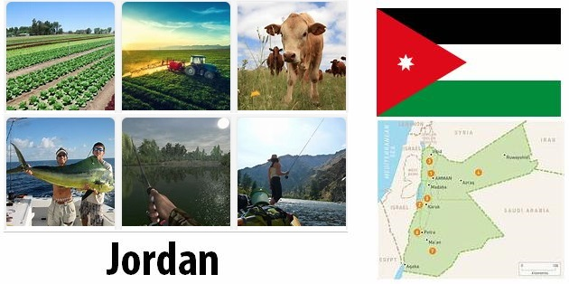Agriculture and fishing of Jordan