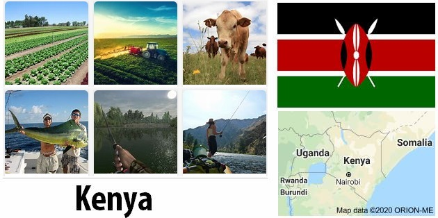 Agriculture and fishing of Kenya