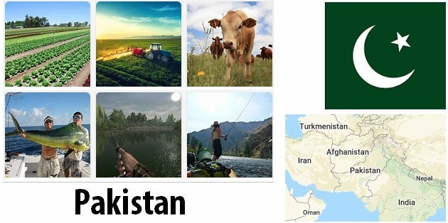 Agriculture and fishing of Pakistan