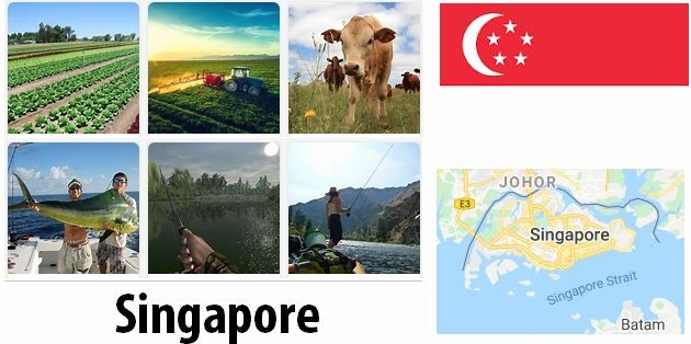 Agriculture and fishing of Singapore