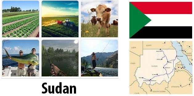 Agriculture and fishing of Sudan