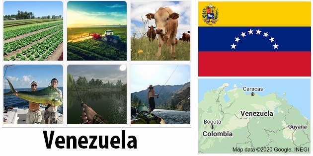 Agriculture and fishing of Venezuela