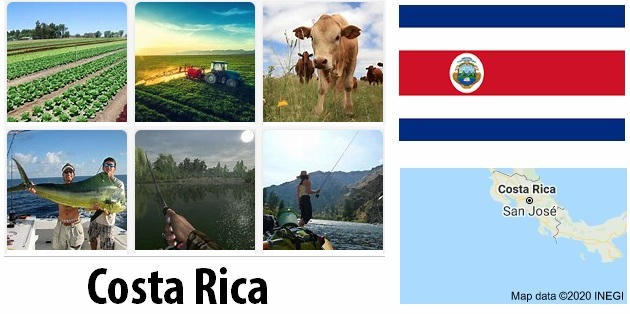 Agriculture and fishing of Costa Rica