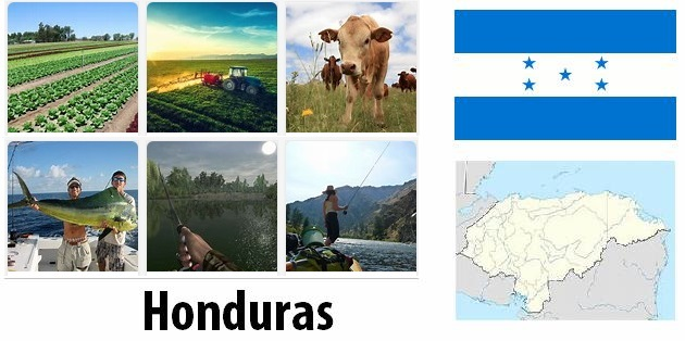 Agriculture and fishing of Honduras