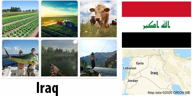 Agriculture and fishing of Iraq