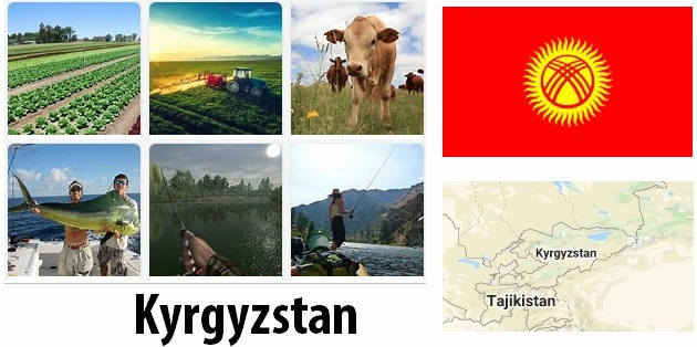 Agriculture and fishing of Kyrgyzstan