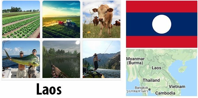 Agriculture and fishing of Laos