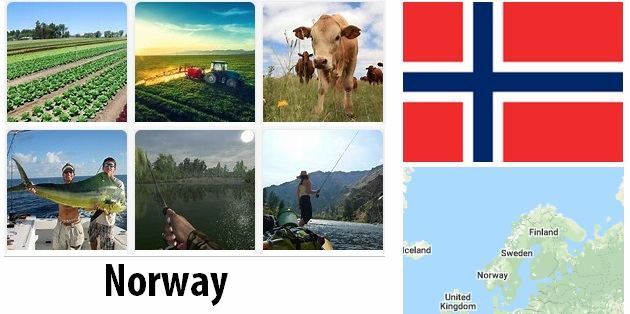 Agriculture and fishing of Norway