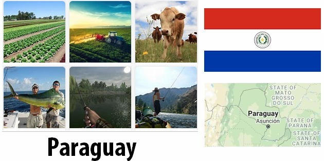 Agriculture and fishing of Paraguay