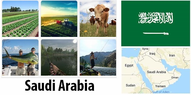 Agriculture and fishing of Saudi Arabia