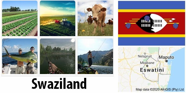 Agriculture and fishing of Swaziland