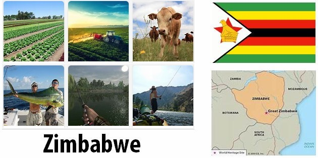 Agriculture and fishing of Zimbabwe